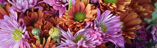 b_1-detalle-flores-que-duran-mas