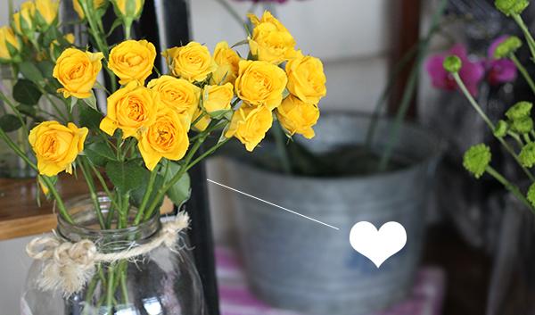 b_11-las-flores-y-las-vibras