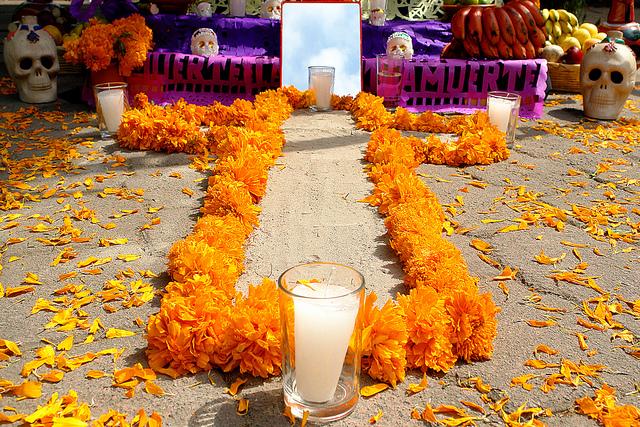 altar camino de flores