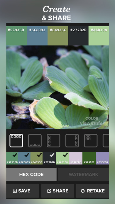Color viewfinder