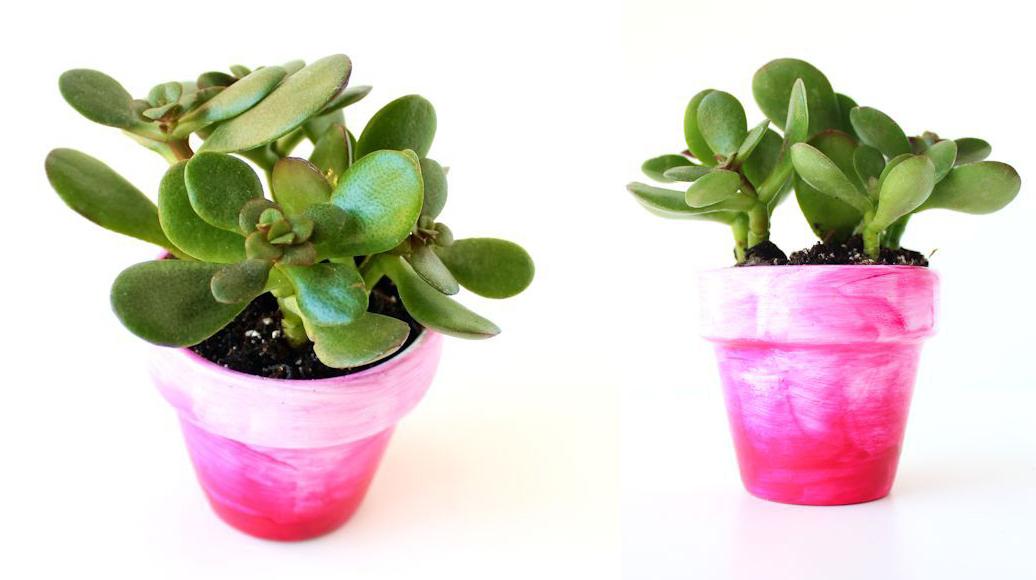 Ideas geniales para decorar con acuarelas ~ Craftingeek